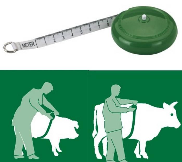 Fita para Calculo de peso do Animal - Bovinos e Suinos