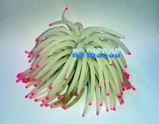 Soma Fish Coral Anemona branca 11 cm