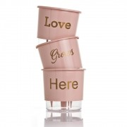 Kit 3 Vasos Autoirrigáveis Love Grows Here Rosa Quartz MÉDIO